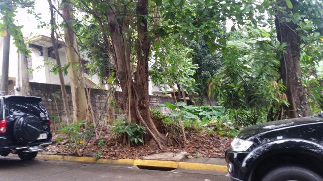 Filinvest 2 Vacant Lot in Batasan Hills, Quezon City - 2