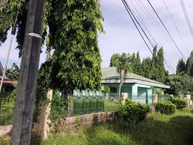 Bungalow House & Lot For Rent In ,Angeles City Near Nepo Mall - 9