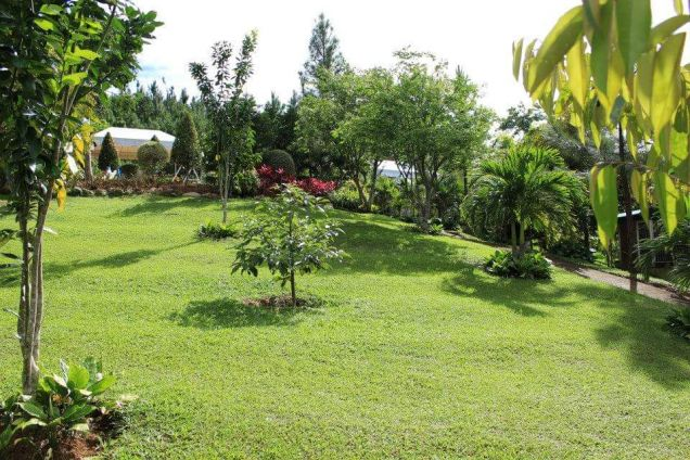 For Rent Resort House with Fabulous Gardens in Busay Cebu City - 9