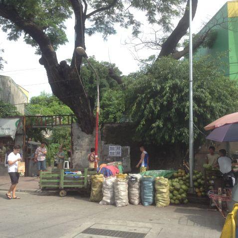 Prime property for sale Magsaysay Blvd, Sta Mesa Manila - 1