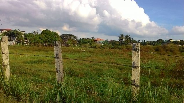 39478 sq.m. vacant lot for long term lease near PEZA Rosario Cavite - 0