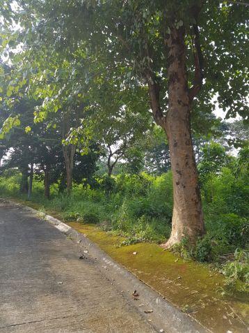 Lot for sale in Village East, Binangonan, Rizal - 2