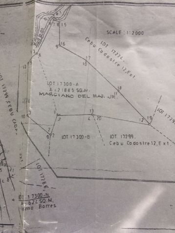 RUSH SALE: Farm Land ideal for agricultural or residential subdivision - 2