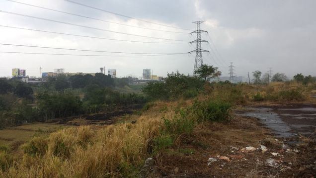 Industrial Vacant Lot for Sale in Dasmarinas Cavite - 2