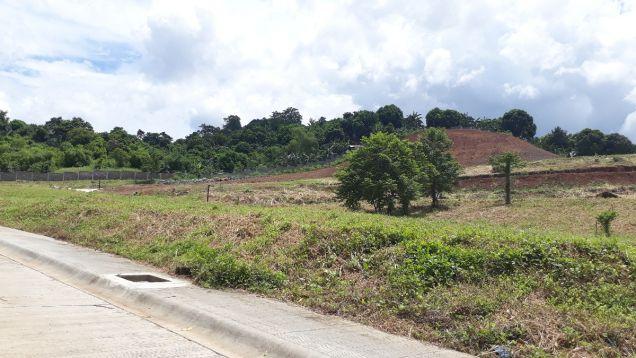 216 sqm Residential Lot for Sale in Amarilyo Crest Havila Taytay Rizal - 1