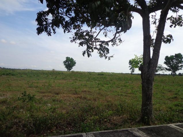 Foreclosed Res. Lot in La Herencia Negrense Subd. Bacolod City - 3