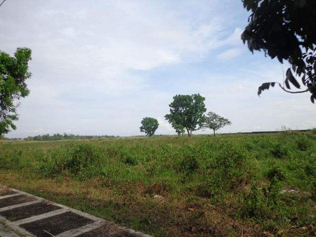 Foreclosed Res. Lot in La Herencia Negrense Subd. Bacolod City - 8
