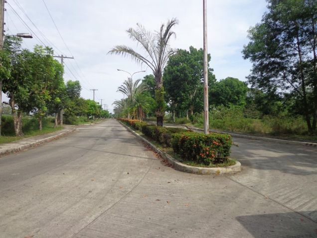 Foreclosed Res. Lot in La Herencia Negrense Subd. Bacolod City - 5