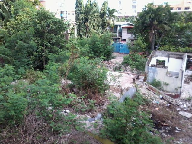 Lot for Rent at Villalon Drive - 3