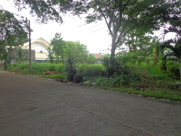 Foreclosed Residential Lot For Sale in Bata Bacolod City - 7