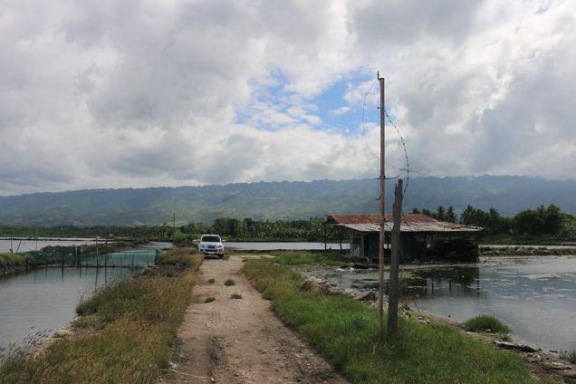 Fish Pond in Badian, Cebu - 3