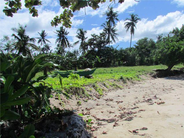 For sale 4,659 sq.m. Beach Lot in Union, San Francisco, Camotes Island, Cebu - 4
