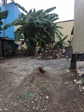 Exclusive Brand New Lot South Fairview Subd Quezon City Philhomes - Gio Matias - 5