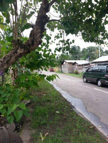 Farm Lot for Sale, 4188sqm Lot in Balingasag, Brgy. Cogon, Municipality of Balingasag, Cedric Pelaez Arce - 2