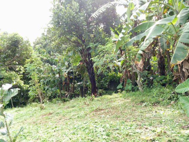 residential lot 100 sqm Near Adventist University of the Philippines - 4