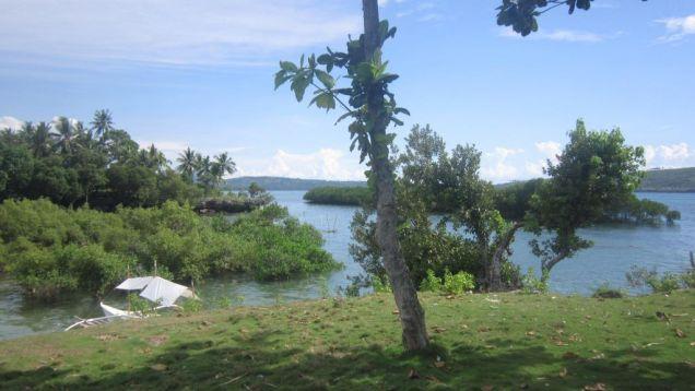 Beach Lot in Badian, Cebu for Sale 39,373 sq.m. - 0