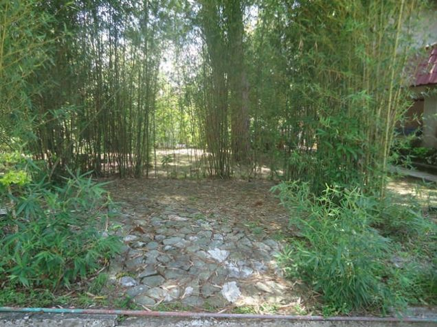 Lot for Sale in Baguio City - 9
