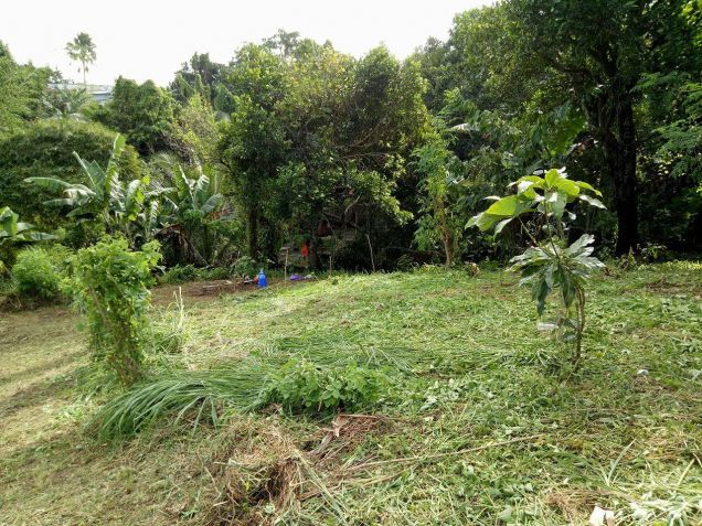 residential lot 100 sqm Near Adventist University of the Philippines - 8