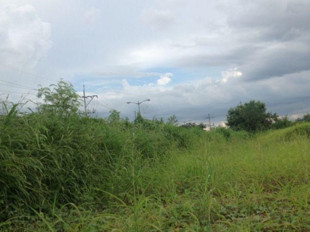 Lot for Sale, 18.4405 Hectares in Metro Manila, Daang Hari, Las Pinas, Maria Teresita Estrada - 4