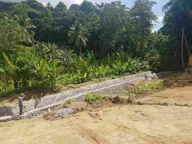 1,276sqm Residential Lots in Holy Trinity Village - 4