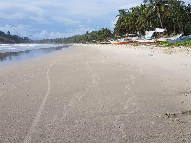 Beautiful Beach Lot at San Vicente Palawan with Sunset View - 1