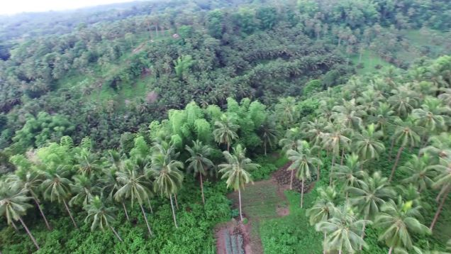ID 14475 – Ocean View Lot for Sale - 4