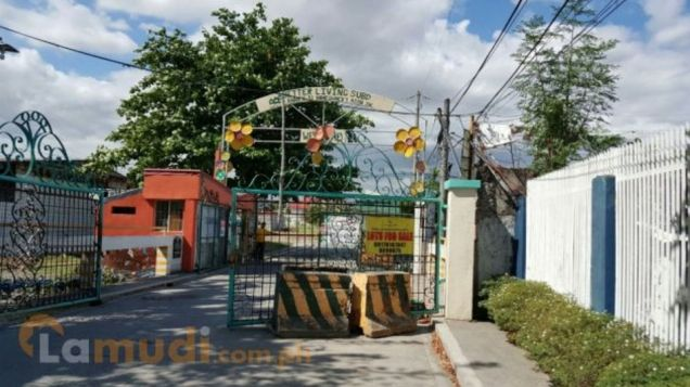 Beautiful Better Living Lot For Sale   0