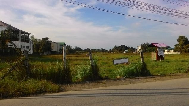39478 sq.m. vacant lot for long term lease near PEZA Rosario Cavite - 4