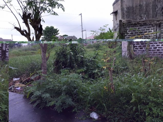 For Sale: Two Adjacent Lot at Armel 7 Banaba San Mateo Rizal - 0