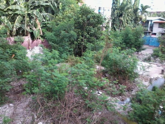 Lot for Rent at Villalon Drive - 4