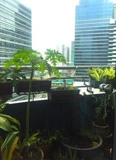 One McKinley  - 3 Bedroom for Sale in Fort Bonifacio, Taguig - 4