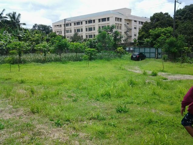 Farm lot with improvement in near Tagaytay city - 4