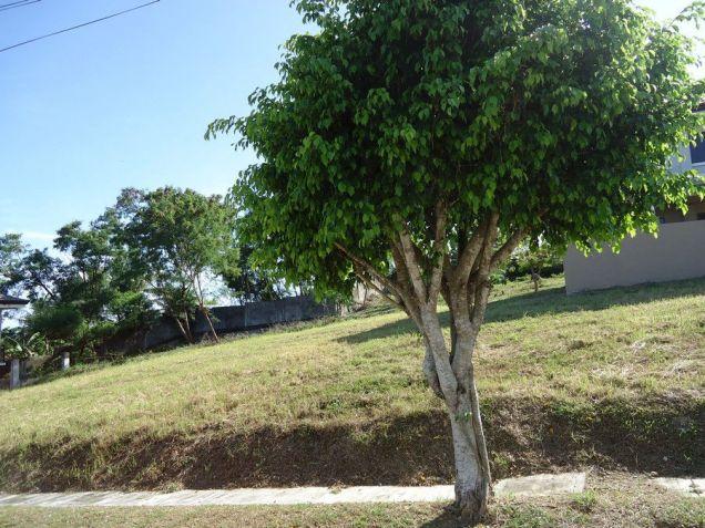 165-square-meter Residential Lot at Molave Highlands, Lamac Consolacion - 0