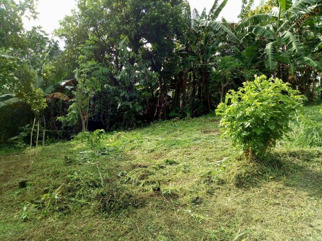 residential lot 100 sqm Near Adventist University of the Philippines - 0
