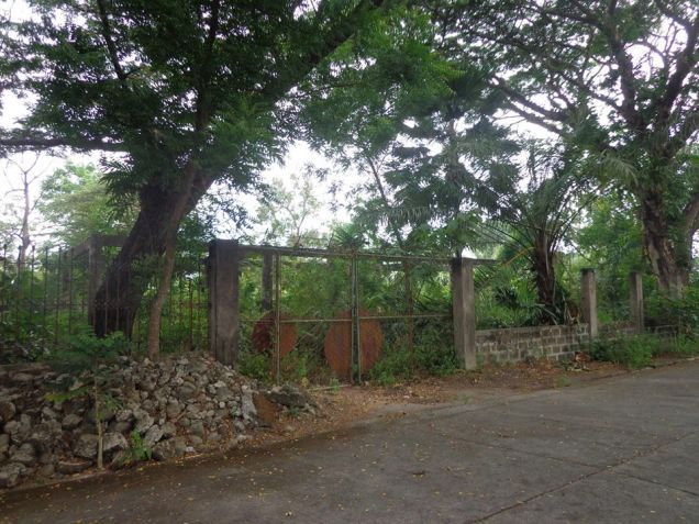 Foreclosed Residential Lot For Sale in Bata Bacolod City - 3