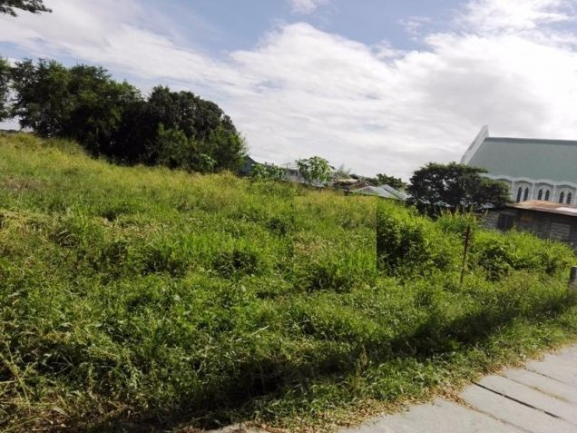 Commercial Lot for Sale P50M - 3