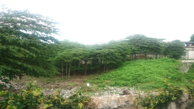 Residential Lot for sale in New Manila Quezon City - 1