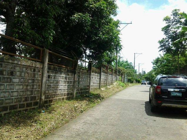 Farm lot with improvement in near Tagaytay city - 7