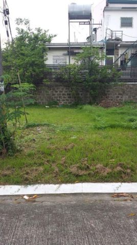 Residential  Lot For Sale in BF Homes Paranaque - 0
