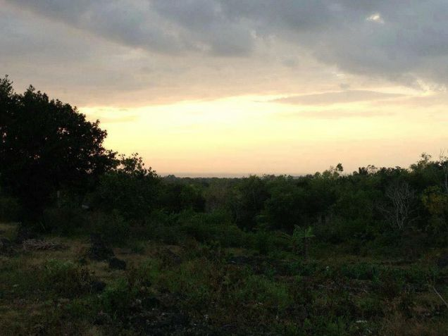 200 sqm Mountain View Residential Lot for Sale at 11,425/month - Tagbilaran - 2