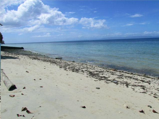 For sale 4,659 sq.m. Beach Lot in Union, San Francisco, Camotes Island, Cebu - 3