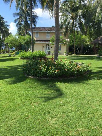 Stunning Beach Property in Badian Overlooking the Ocean and Negros Island - 7