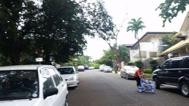 Filinvest 2 Vacant Lot in Batasan Hills, Quezon City - 3