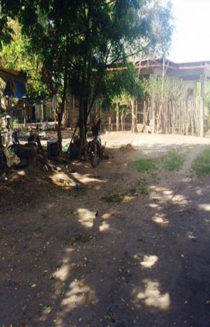 ID 14454 - Lot For Sale In Dumaguete City - 1