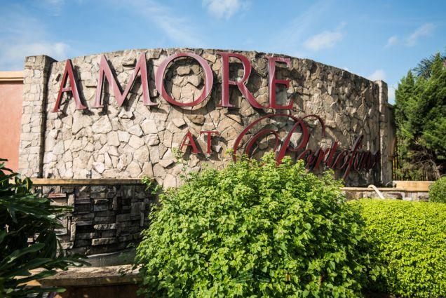 Prime Big Lot for Sale at Portofino Amore Muntinlupa City - 6