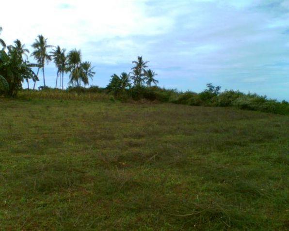 Lot for Sale, 25961sqm Lot in Laguindingan, Mauswagon, Cedric Pelaez Arce - 2