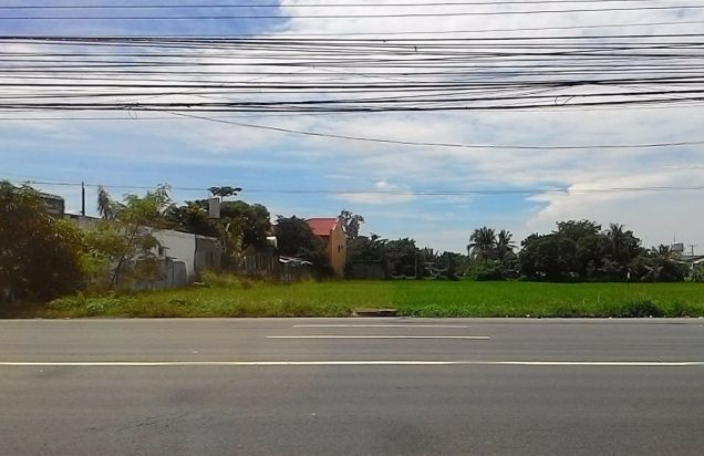 1ha and 1.6ha Commercial Lot for Lease along Emilio Aguinaldo Highway Cavite - 2
