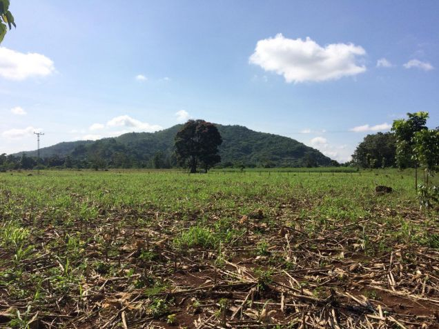 12-hectares Bukidnon Manolo Fortich Alae Raw Land for Sale by Owner (T-126258) - 1