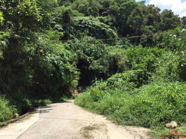 8,000 sqm Lot for Sale in Asin Road, Benguet - 1