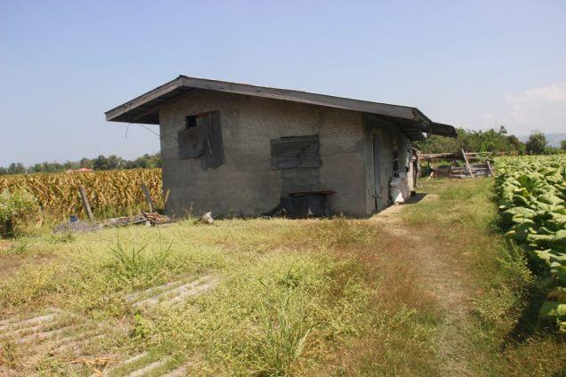 1,224 Sqm. Farm Lot for Sale, Balaoan, La Union, Ilocos - 8